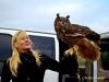 Royal Gauntlet Birds of Prey Hunt Eagle Owl