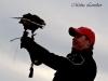 Royal Gauntlet Birds of Prey Falconer with Harris Hawk