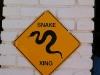RattlesnakeRoundup7